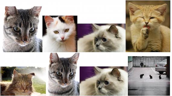 Seamless Responsive Photo Grid   CSS-Tricks