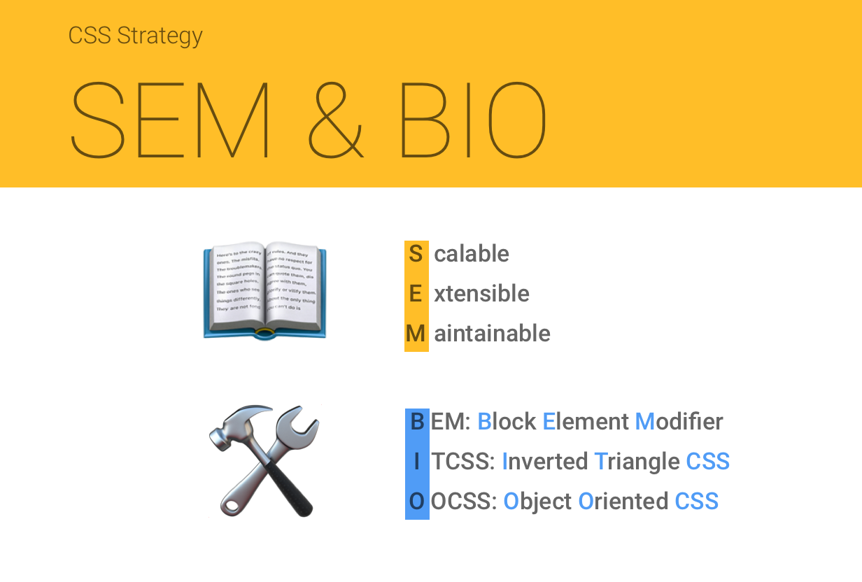 Combining the Powers of SEM and BIO for Improving CSS   CSS