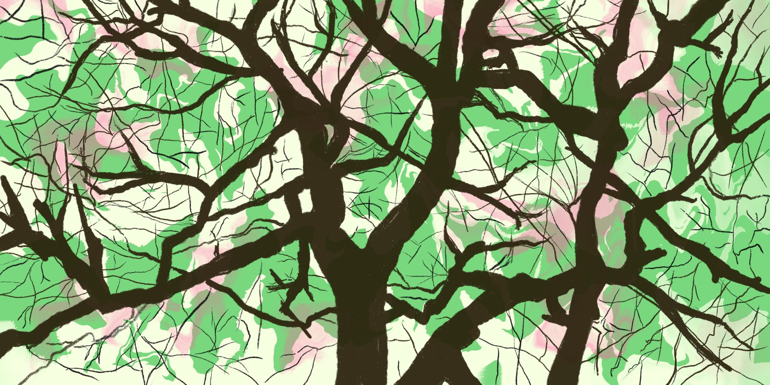 Full color tree illustration.