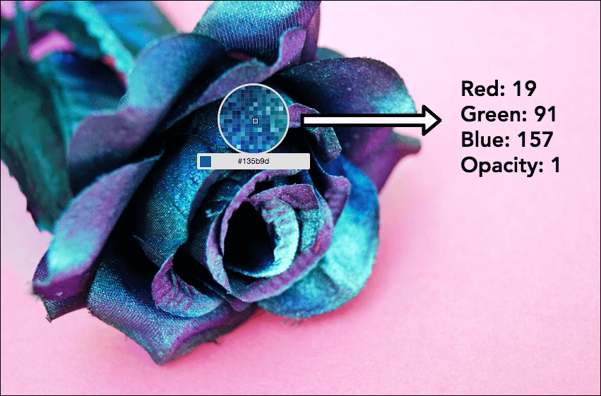 Image of a blue and purple rose on a light pink background. A section of the rose is magnified to reveal the RGBA values of a specific pixel.