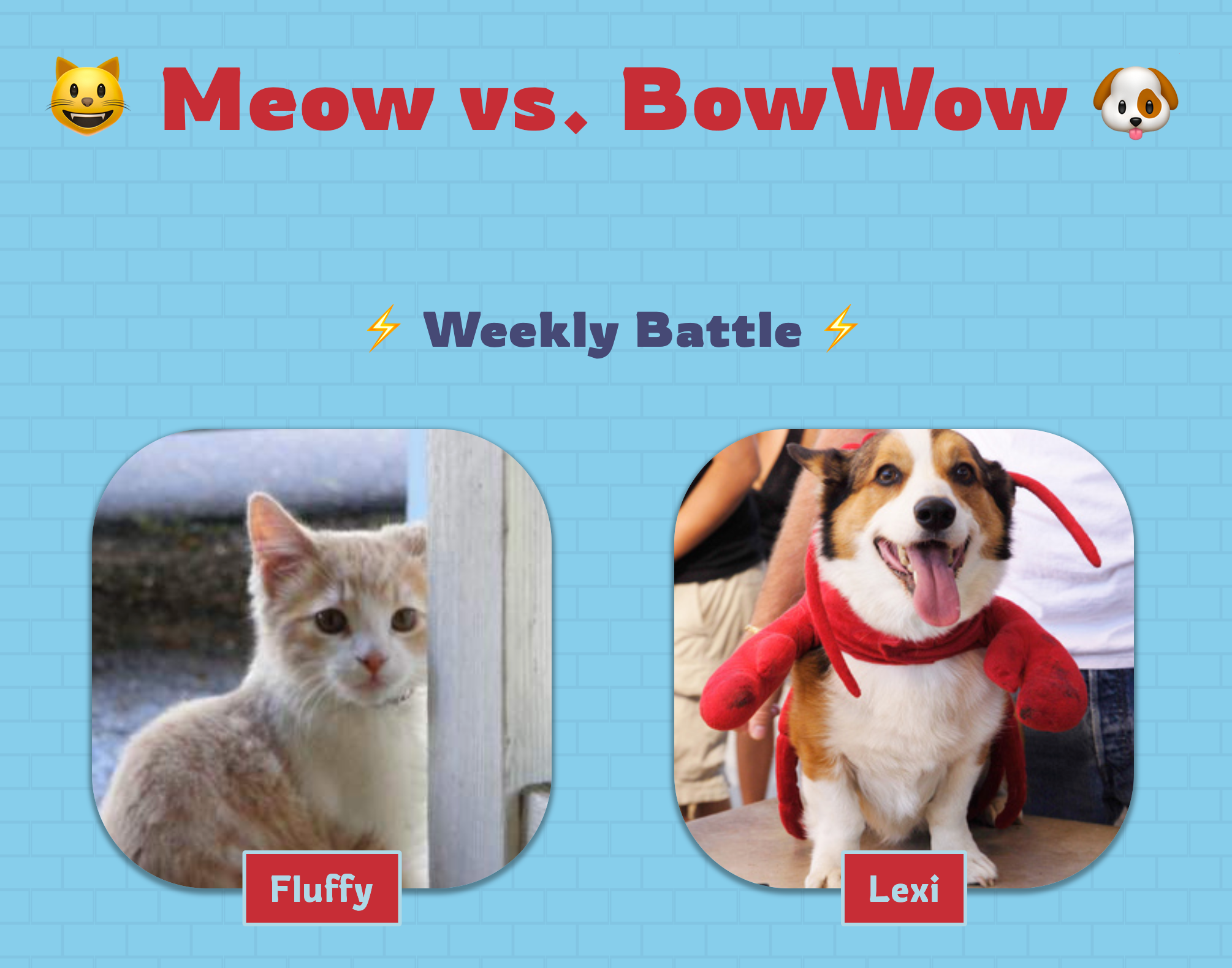 Screenshot of the site, showing a Meow vs. Bow Wow heading above a Weekly Battle subheading, followed by a photo of a tabby cat named Fluffy and one of a happy dog named Lexi.