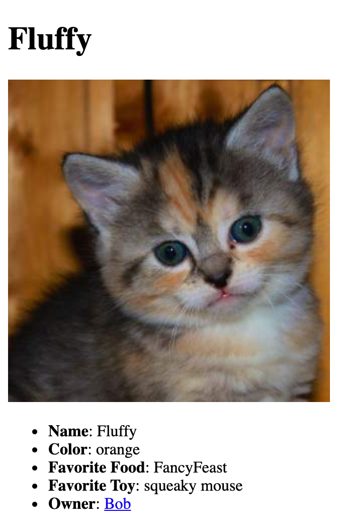 Screenshot of a cat profile page that starts with the cat's name for the heading, followed by the cat's photo, and a list of the cat's details.