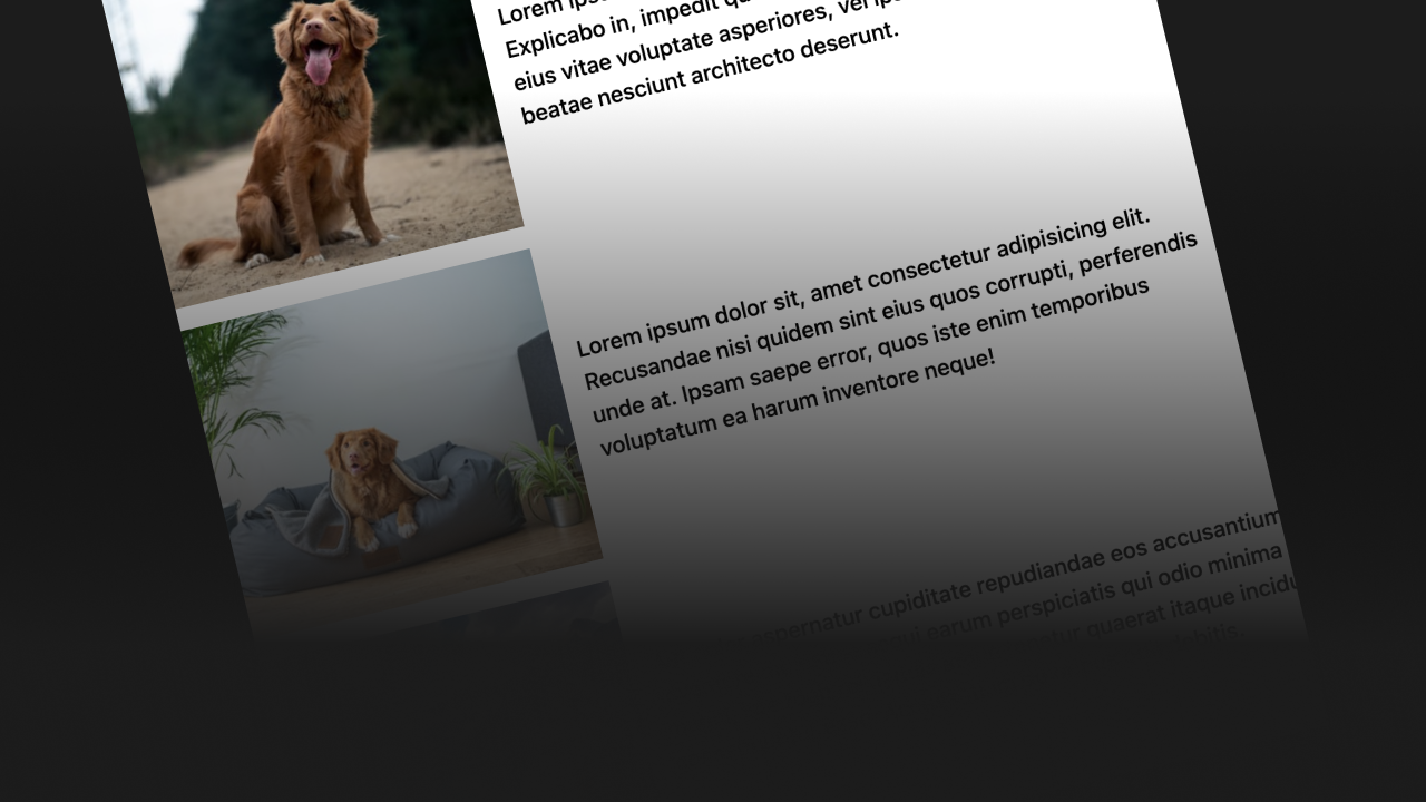 Thumbnail for #208: A CSS Grid Layout with Pictures Down One Side Matched Up with Paragraphs on the Other